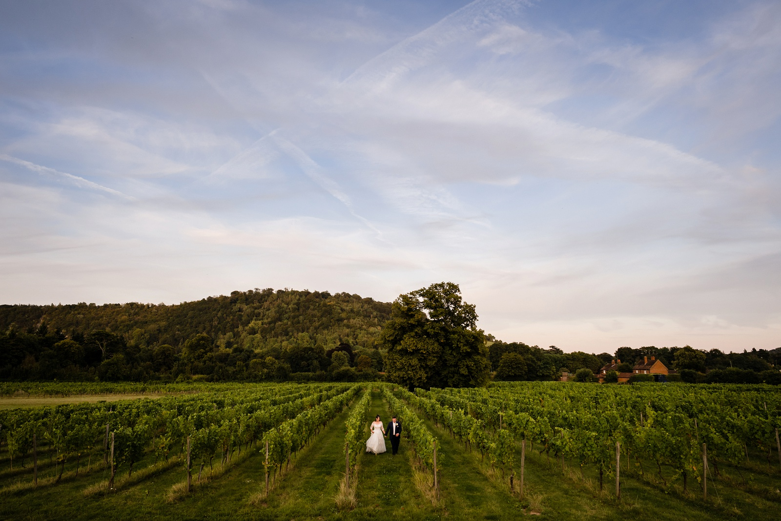 Denbies Wine Estate Wedding